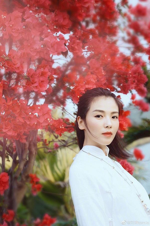 图片来源 微博@刘涛tamia