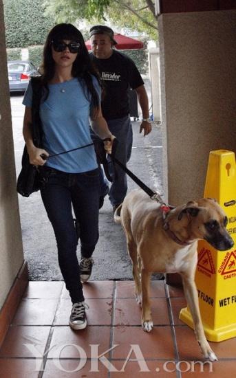 欧美明星与宠物狗狗的街拍合集(7)