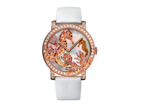 宝诗龙海豹手表
